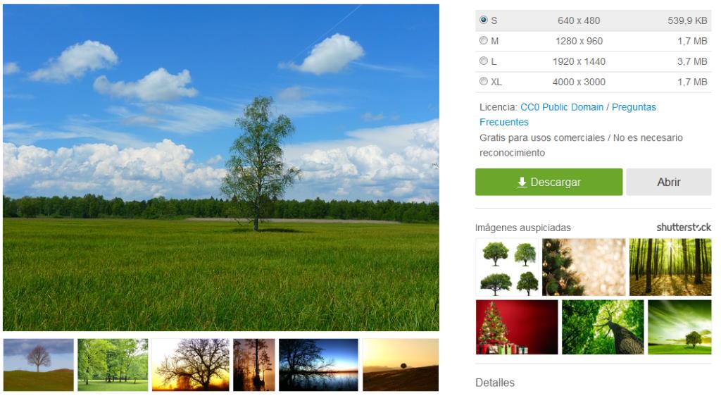 descargar-imagen-pixabay